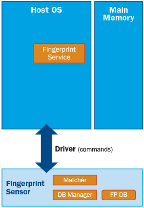 Fingerprint Security | Biometric Authentication | SentryPoint