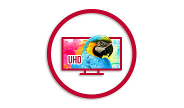 Feature Benefits Unmatched Video Resolution