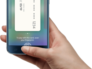 Synaptics Mobile Payment Authentication